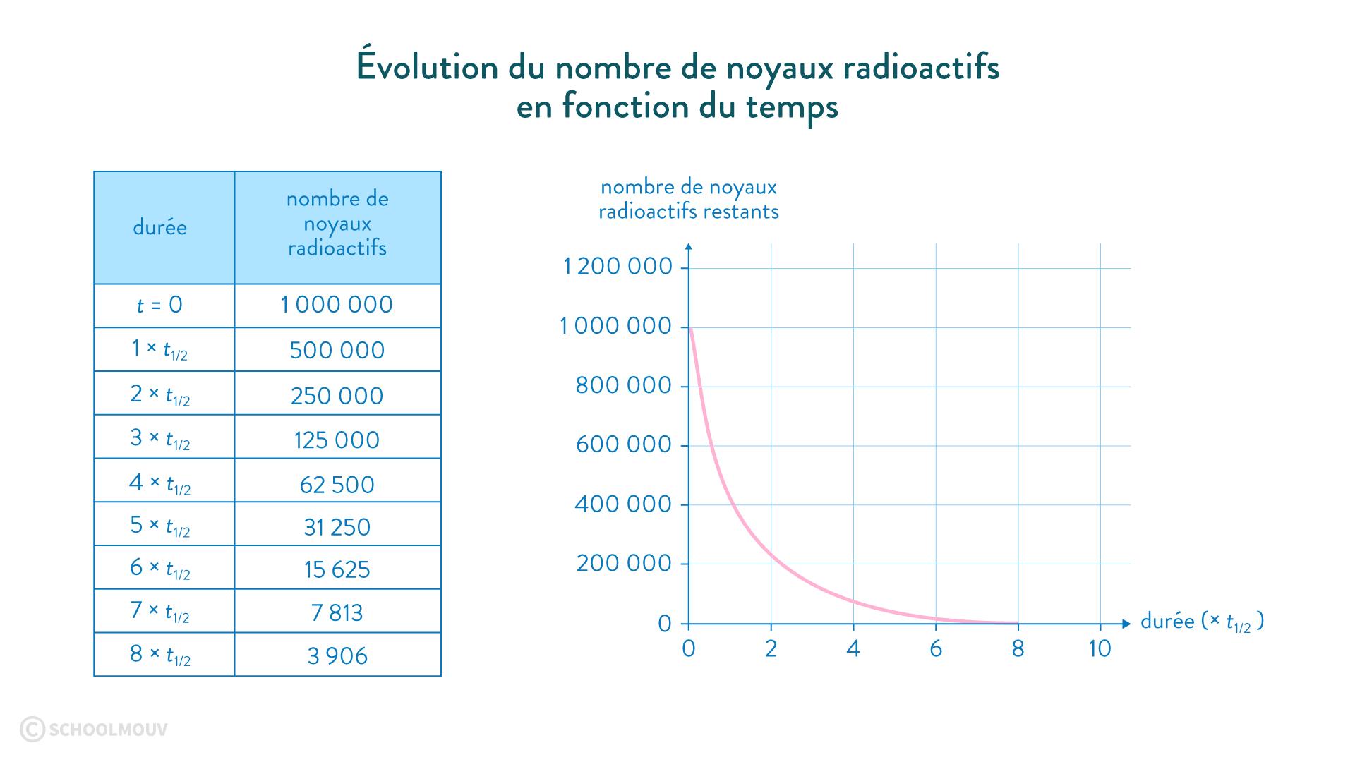 évolution noyaux radioactifs temps