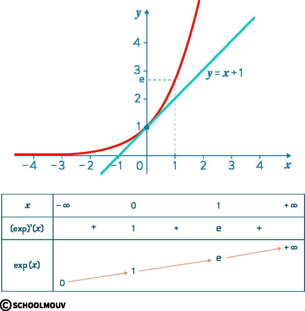 mathématiques première réforme fonction exponentielle