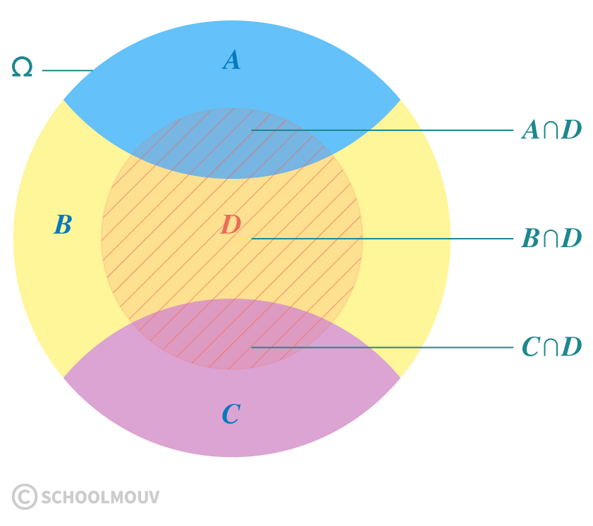 mathématiques première réforme probabilités conditionnelles totales indépendance