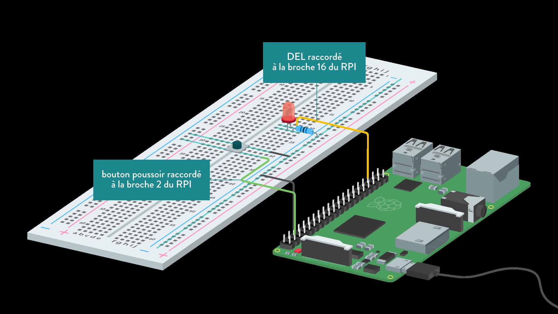 numérique sciences informatique première périphèriques principe de câblage du bouton poussoir et de la LED sur le RPI