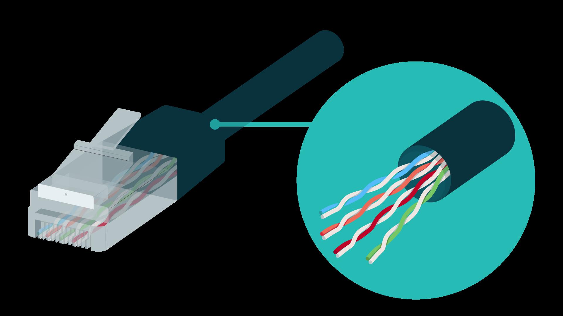 numérique sciences informatiques IP et le réseau local première Câble Ethernet, extrémités de type RJ45, paires torsadées deux à deux