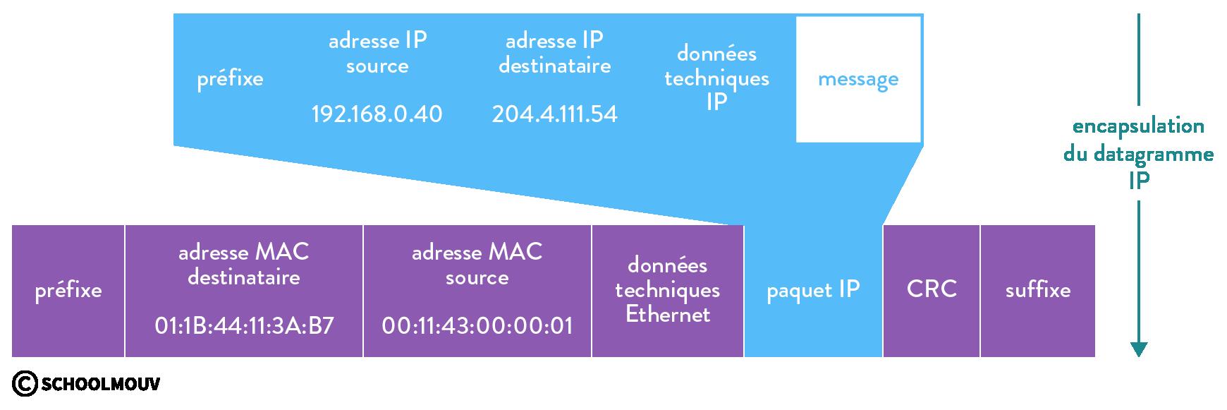numérique sciences informatiques IP et le réseau local première encapsulation du datagramme IP de l'émetteur vers la passerelle de son réseau local