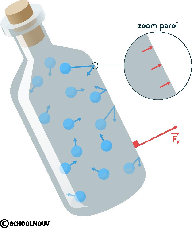 physique chimie première statique des fluides force pressante