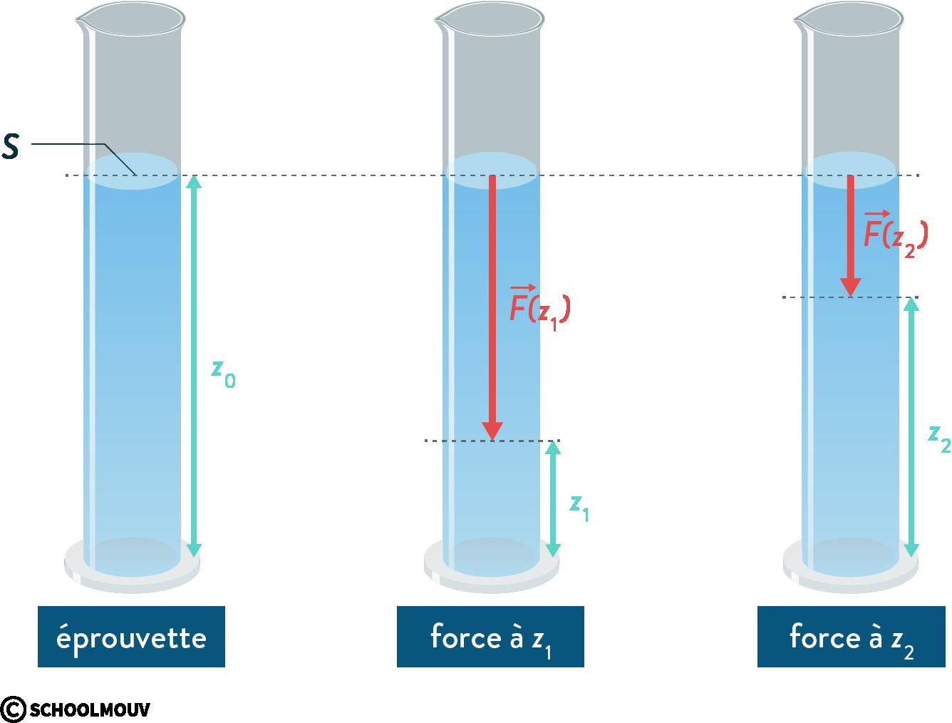physique chimie première statique des fluides incompressible pression