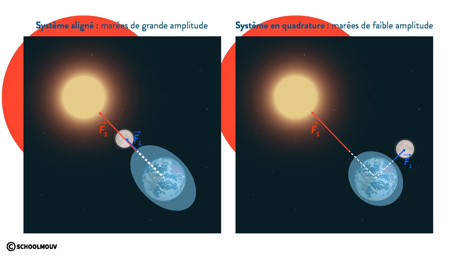 physique chimie première champ gravitationnel marées Lune Soleil