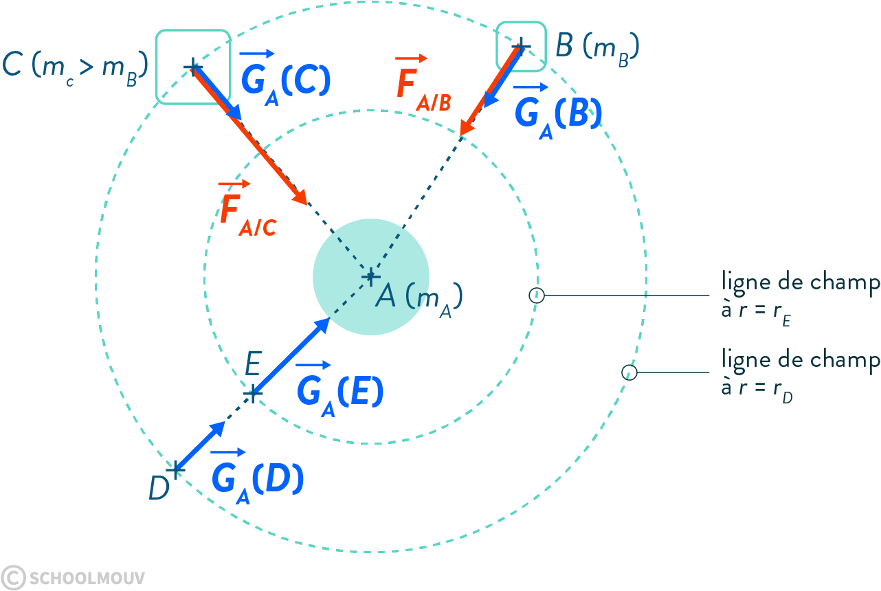 physique chimie première champ gravitationnel lignes