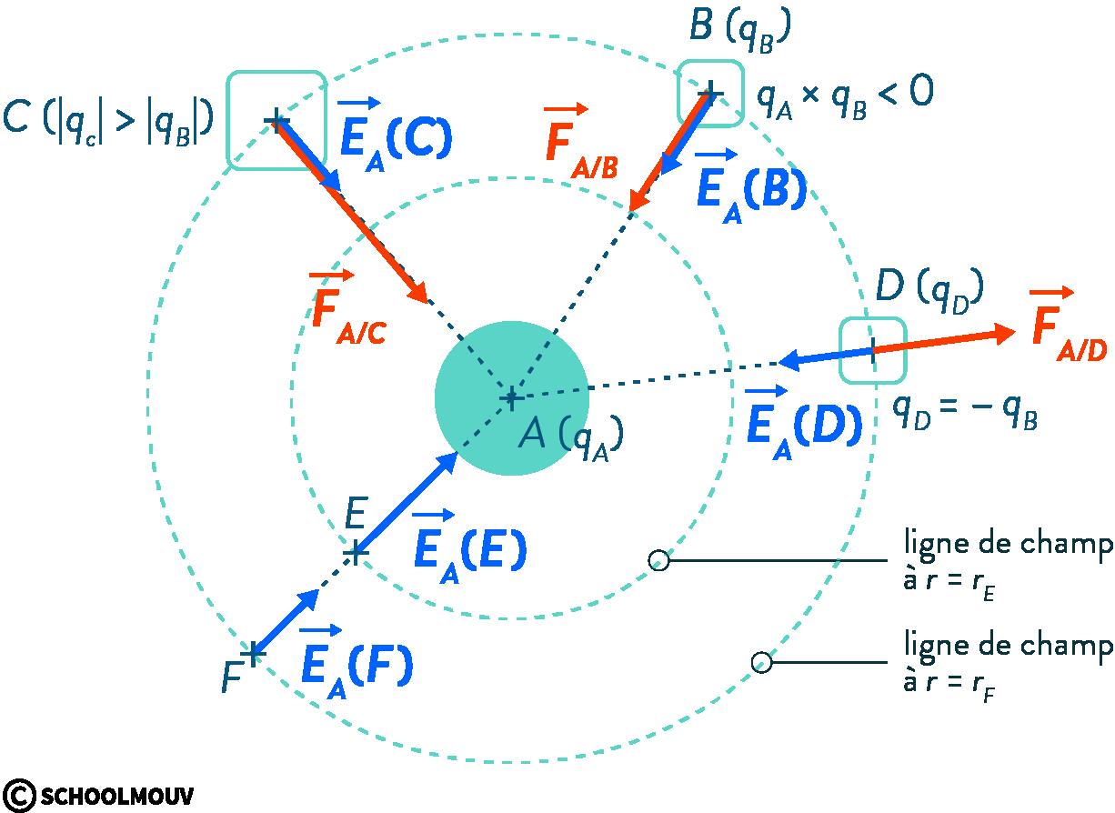 physique chimie première champ électrique électrostatique lignes force Coulomb