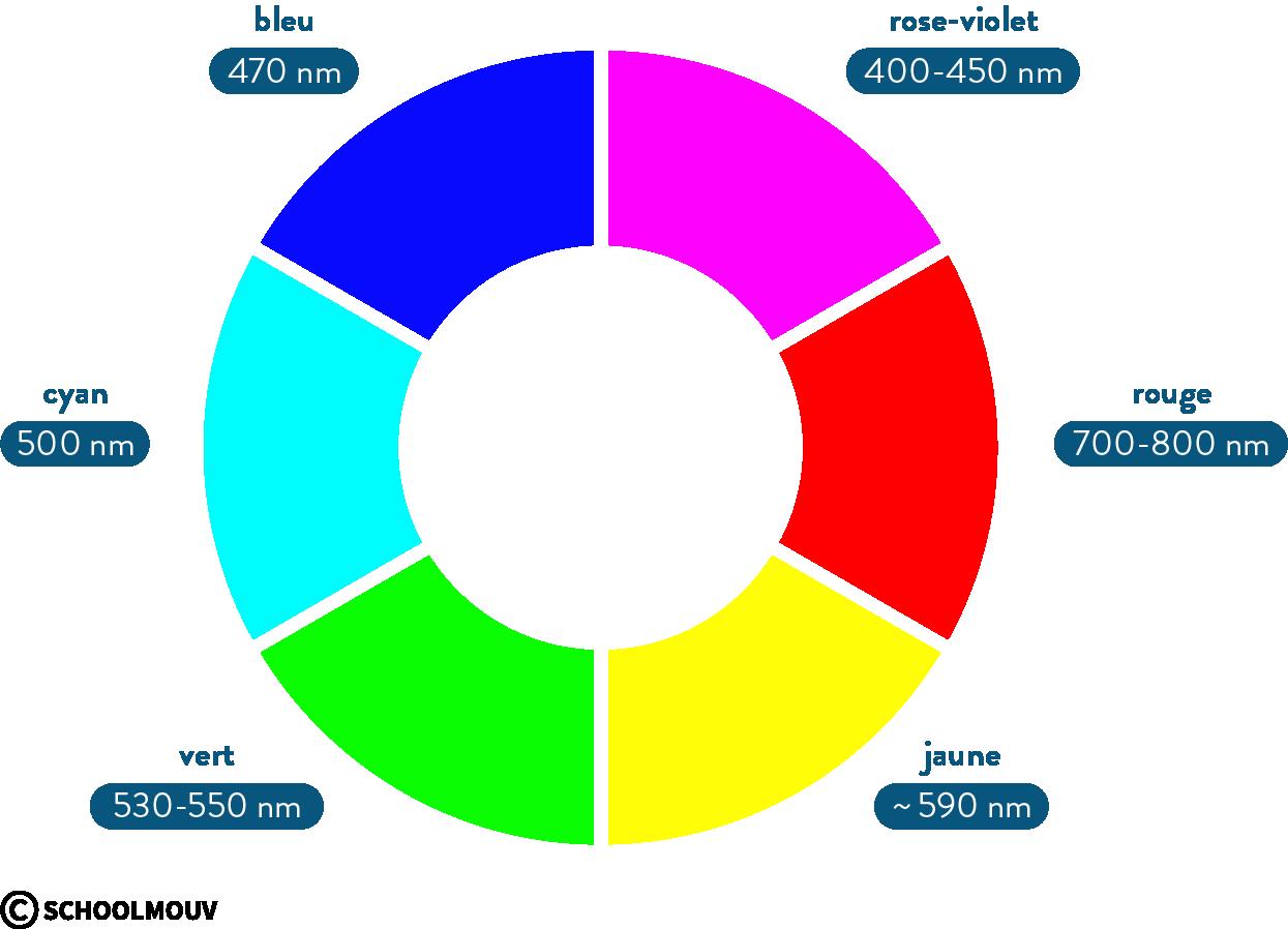 physique chimie première réforme absorbance spectre absorption