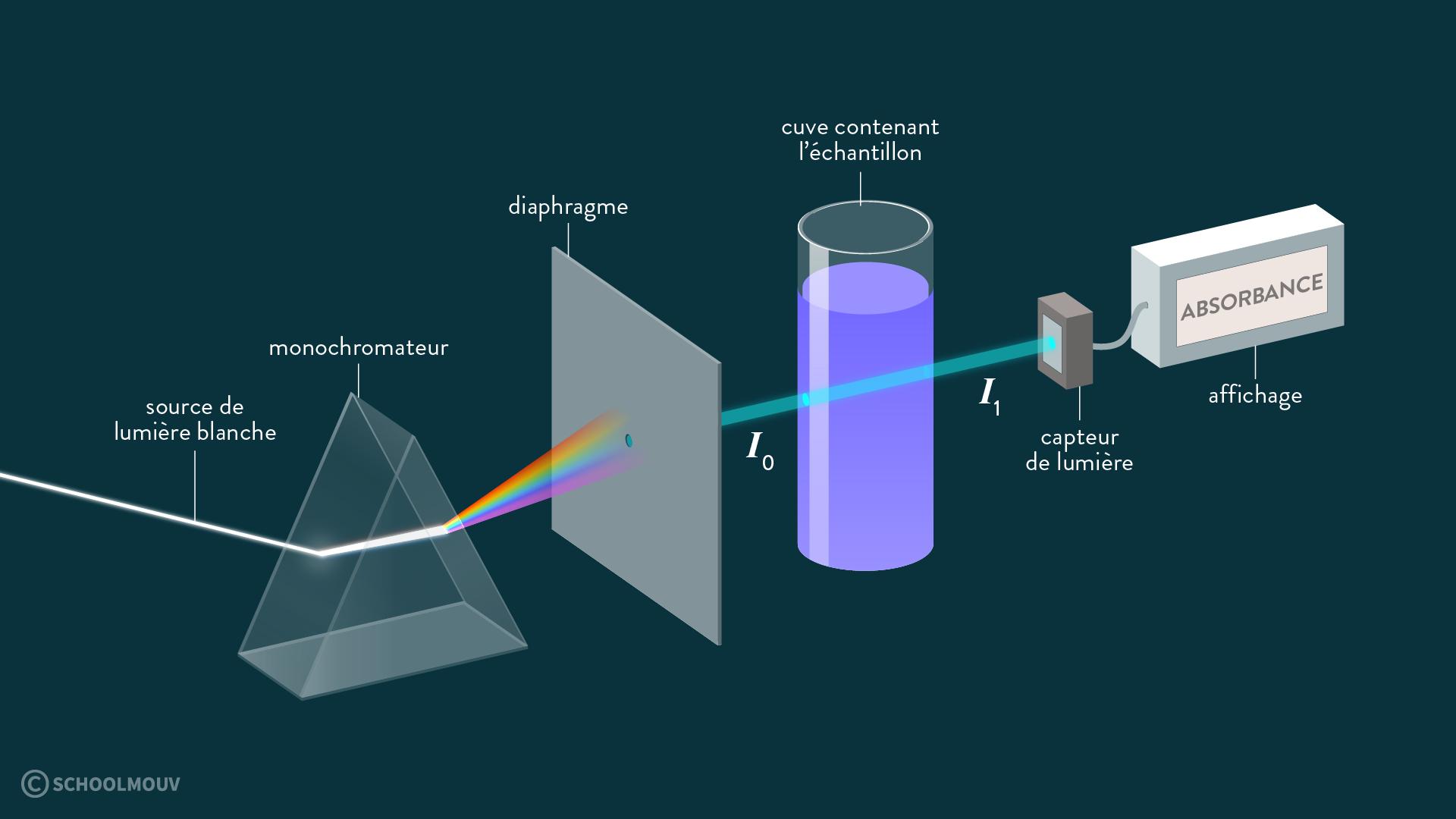 physique chimie première réforme absorbance spectre absorption spectrophotomètre