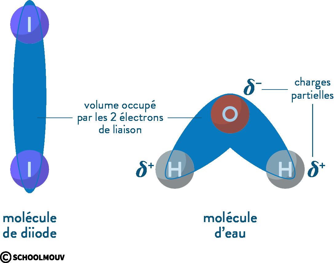 physique chimie première réforme cohésion matière molécule diiode eau