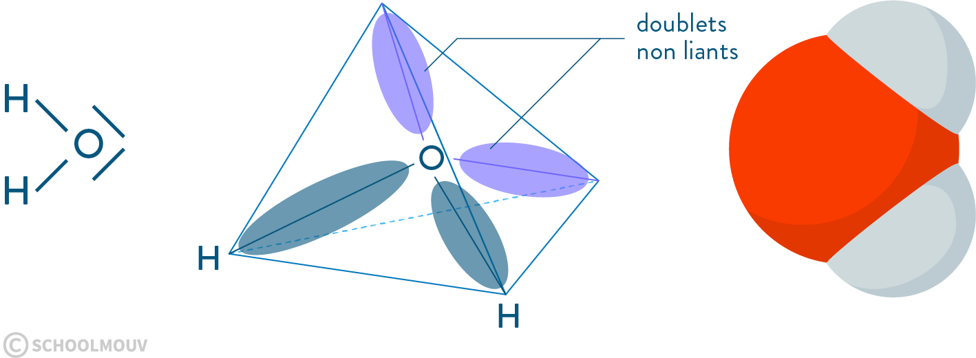 physique chimie première réforme représentation Lewis atome molécule eau