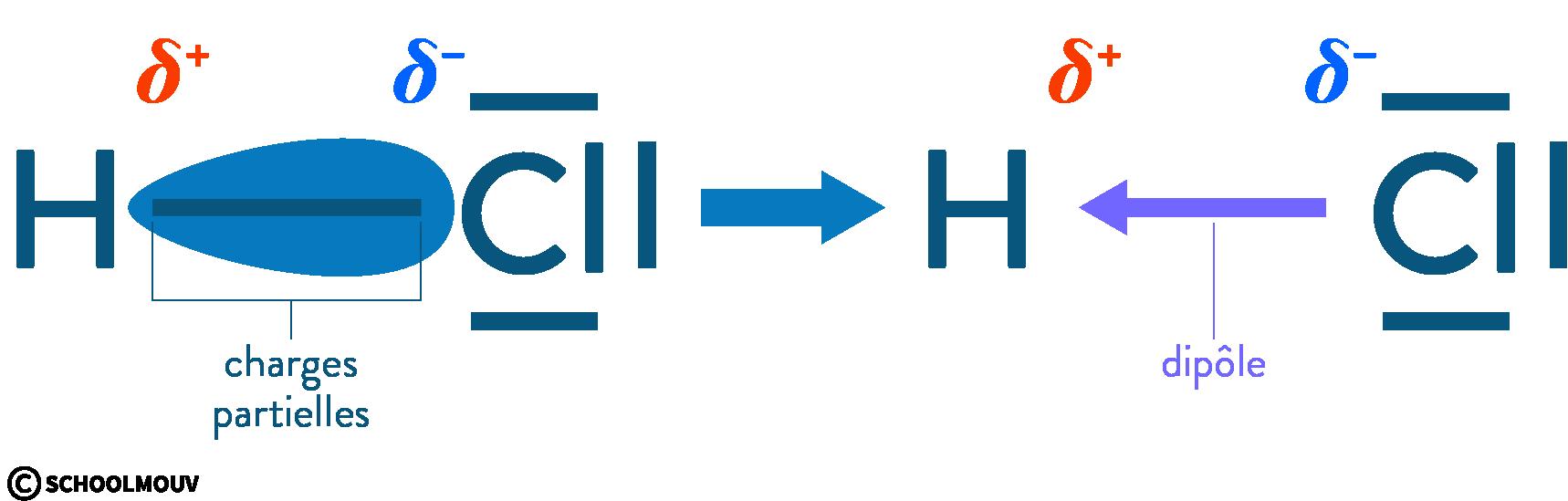 physique chimie première réforme polarité électronégativité molécule chlorure hydrogène
