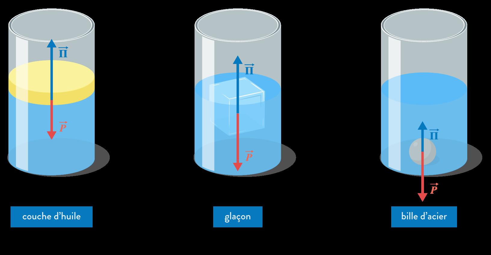 physique chimie première réforme solubilité extraction solvant poussée Archimède