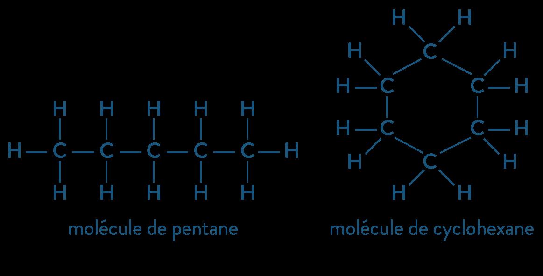 physique chimie première réforme solubilité extraction solvant Lewis cyclohexane pentane