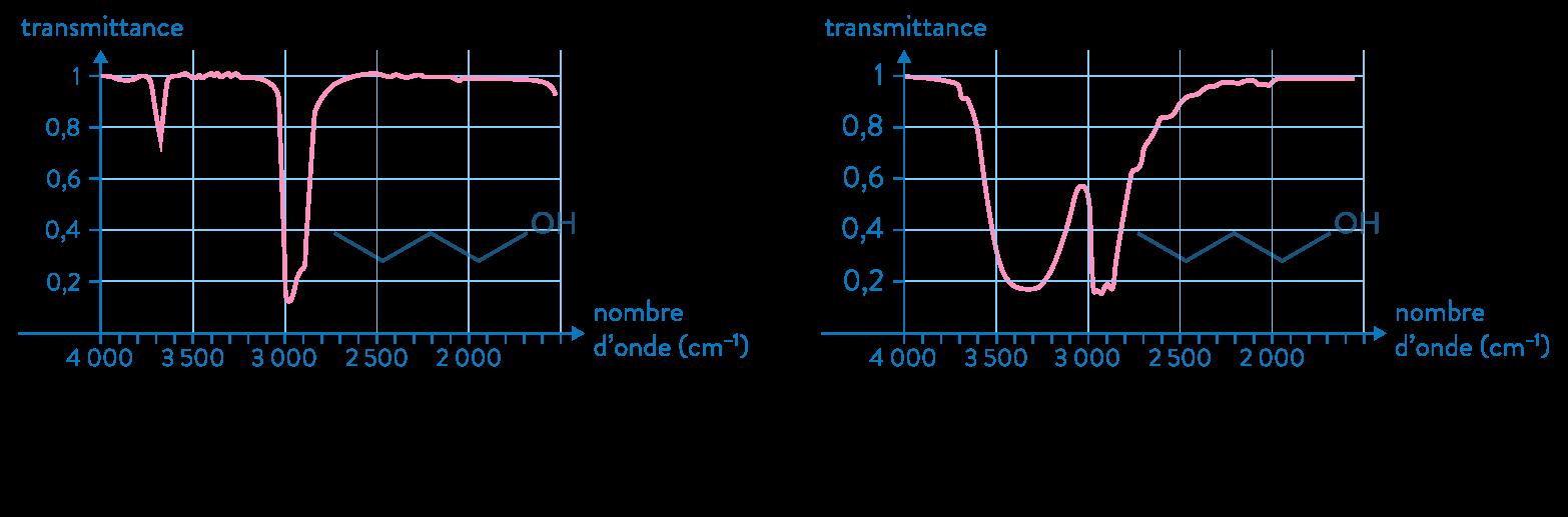 physique chimie première réforme représentation molécules nomenclature spectre absorption butanol