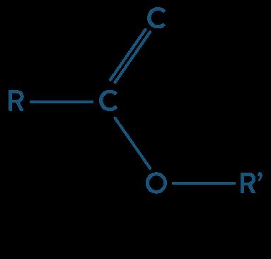 physique chimie première réforme synthèse organique ester