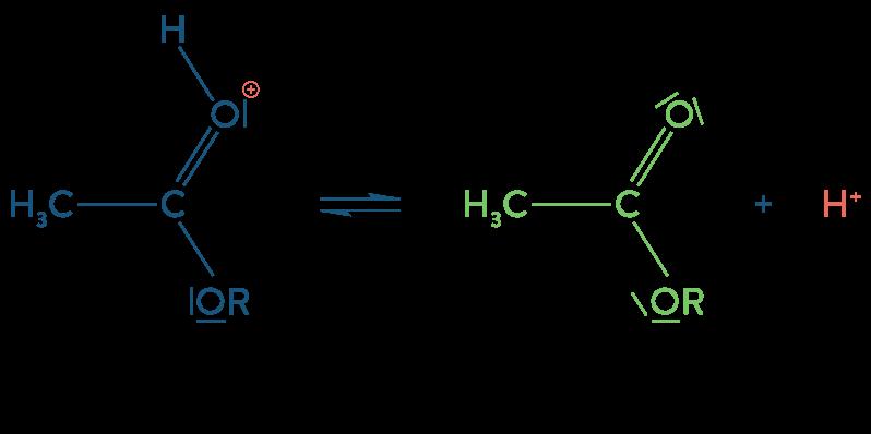 physique chimie première réforme synthèse organique estérification