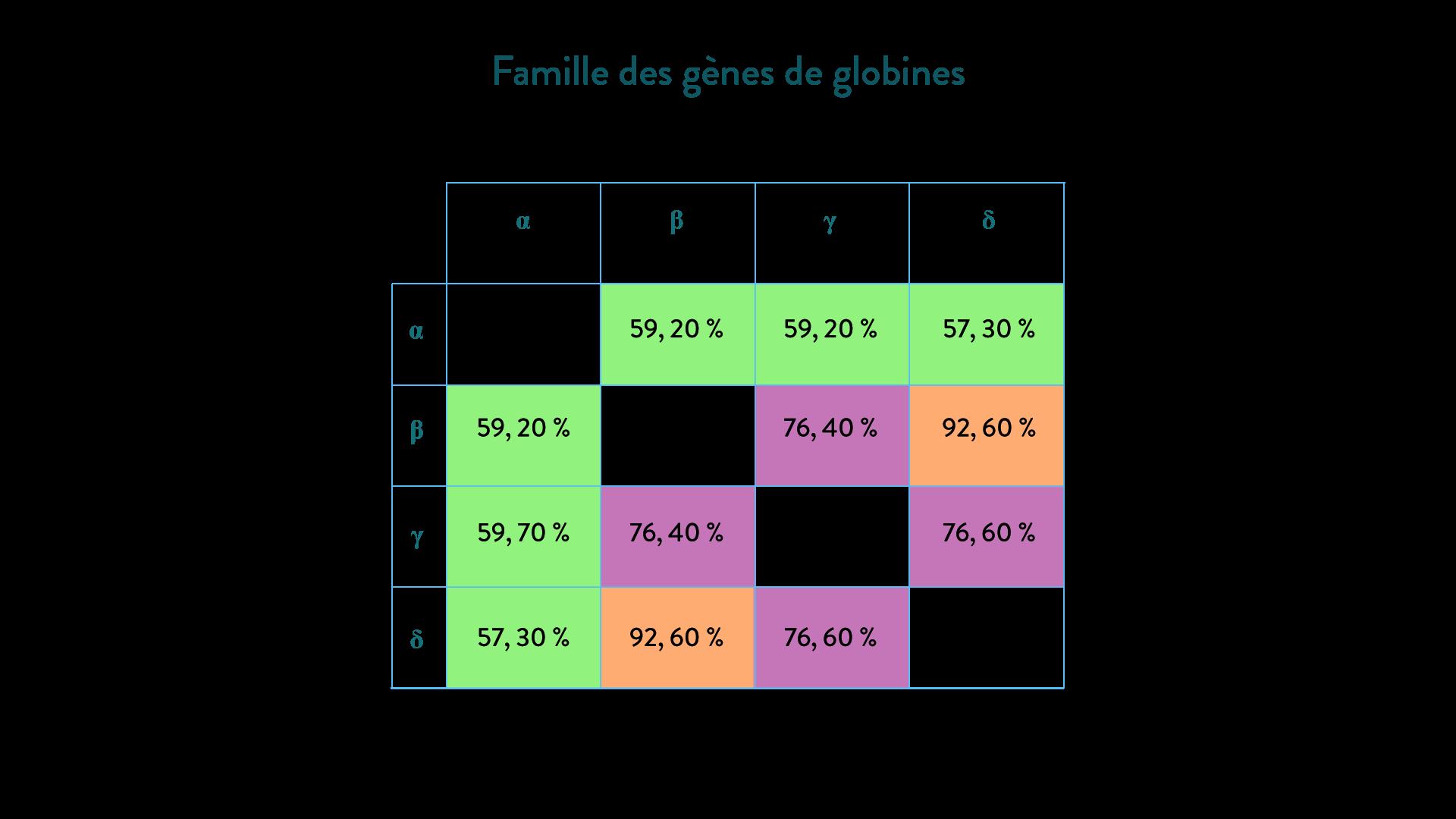 famille des gènes de globine arbre phylogénétique