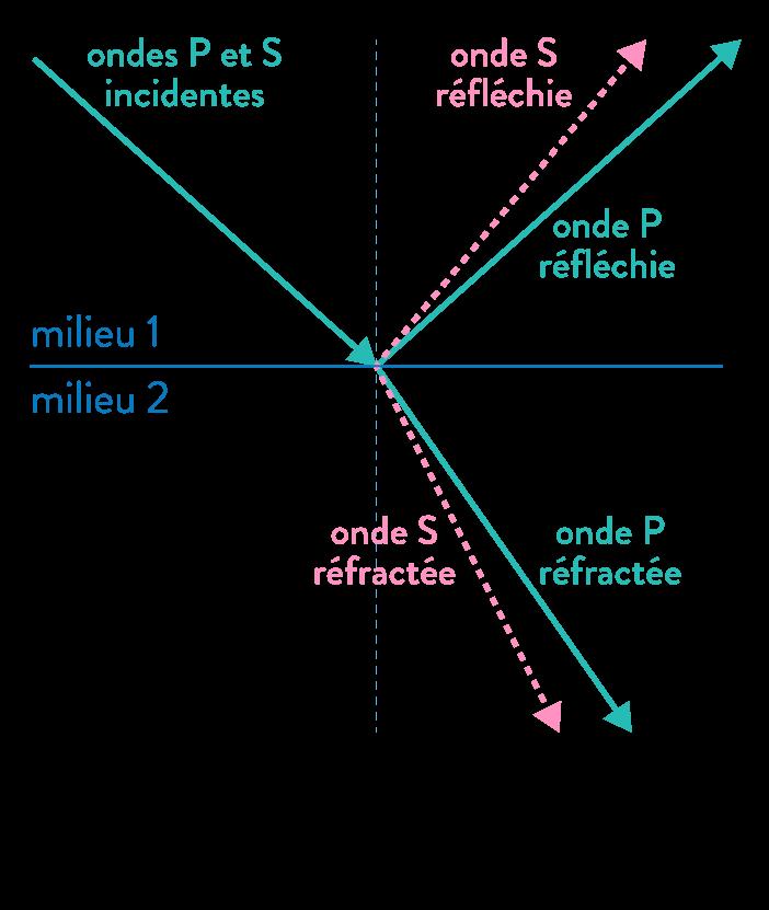 ondes sismiques p et s changement de milieu ondes réfléchies réfractées sismologie et structure de la terre svt première schoolmouv