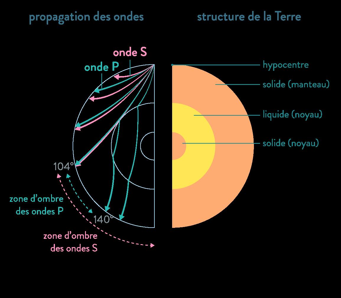 propagation des ondes structure de la terre ondes p et s zones d'ombre milieu solide liquide réfraction svt première schoolmouv