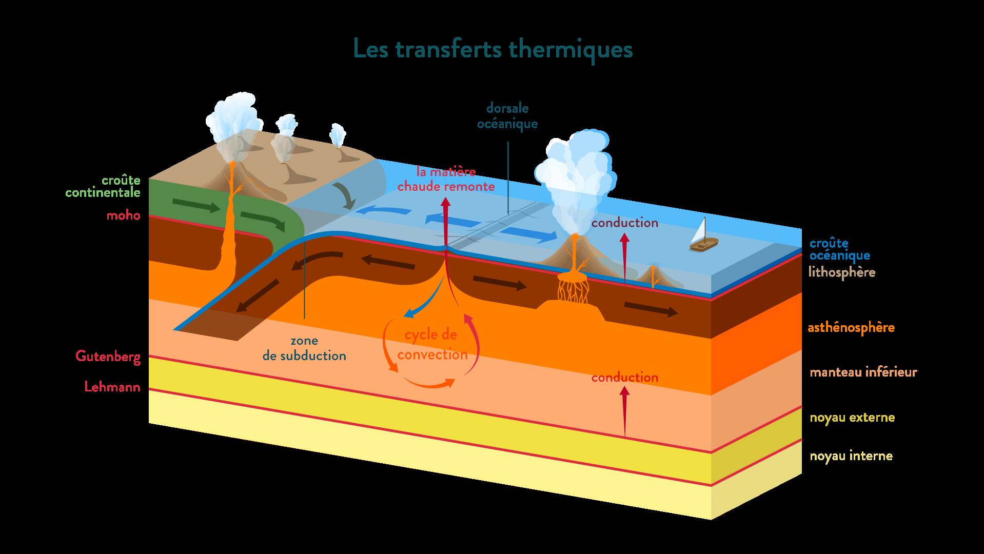 transferts thermiques convection conduction subduction dorsale océanique lithosphère asthénosphère manteau mécanismes de transferts thermiques terre svt première schoolmouv