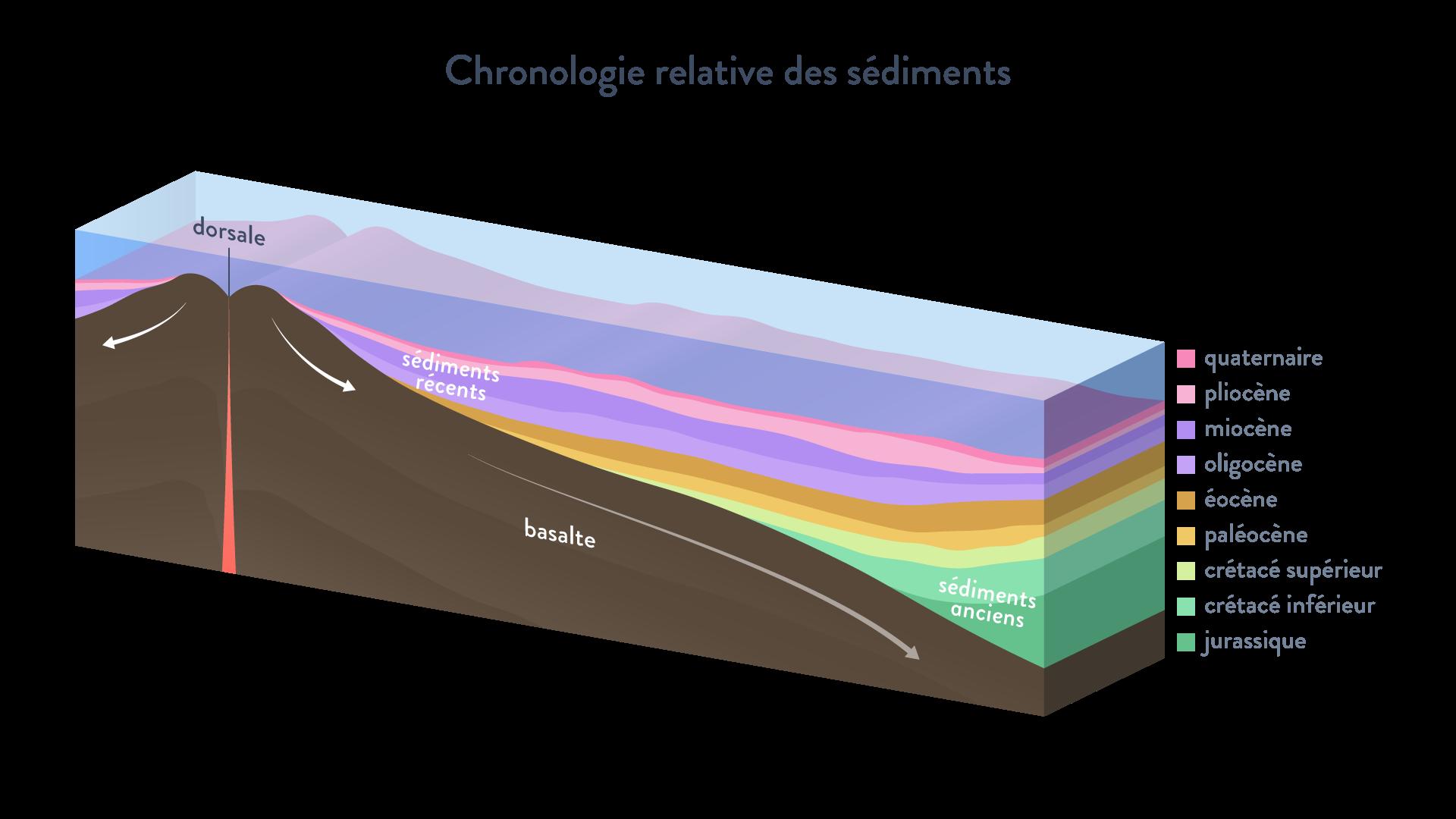 chronologie relative des sédiments  carottage couche basaltique dorsale svt première