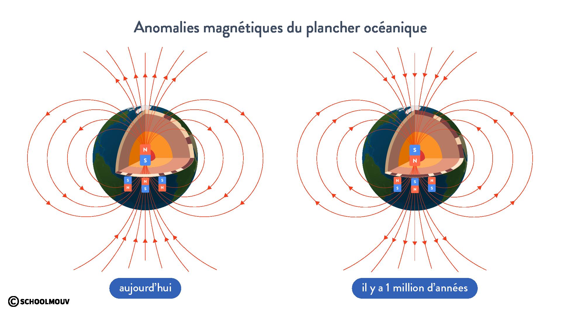 Anomalies magnétiques du plancher océanique lithosphère champ magnétique