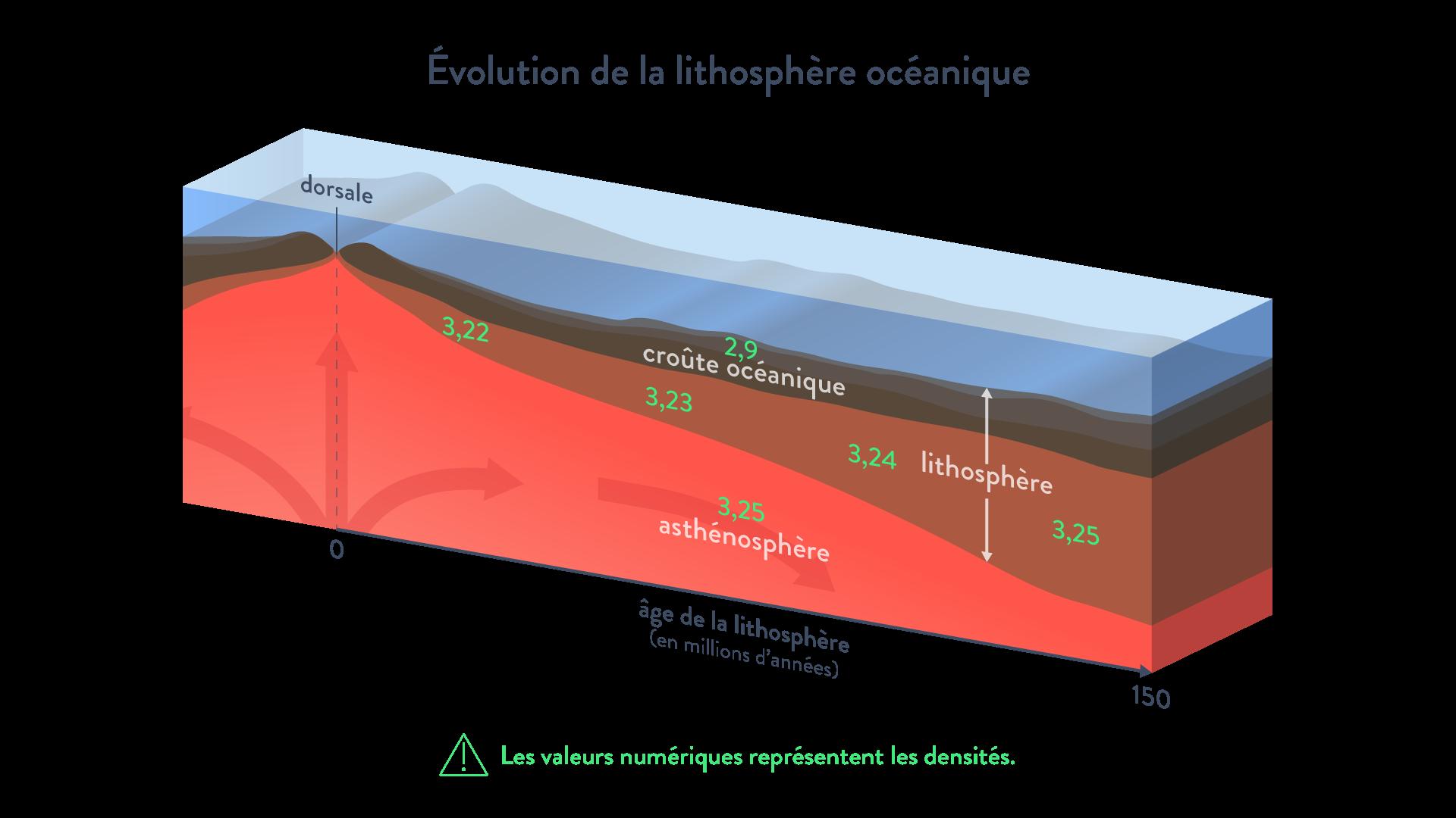 Évolution de la densité de la lithosphère océanique svt première