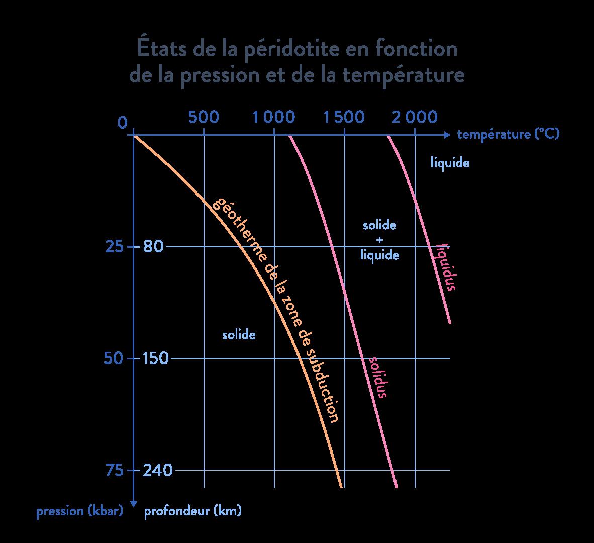Graphique montrant les états de la péridotite géotherme svt première
