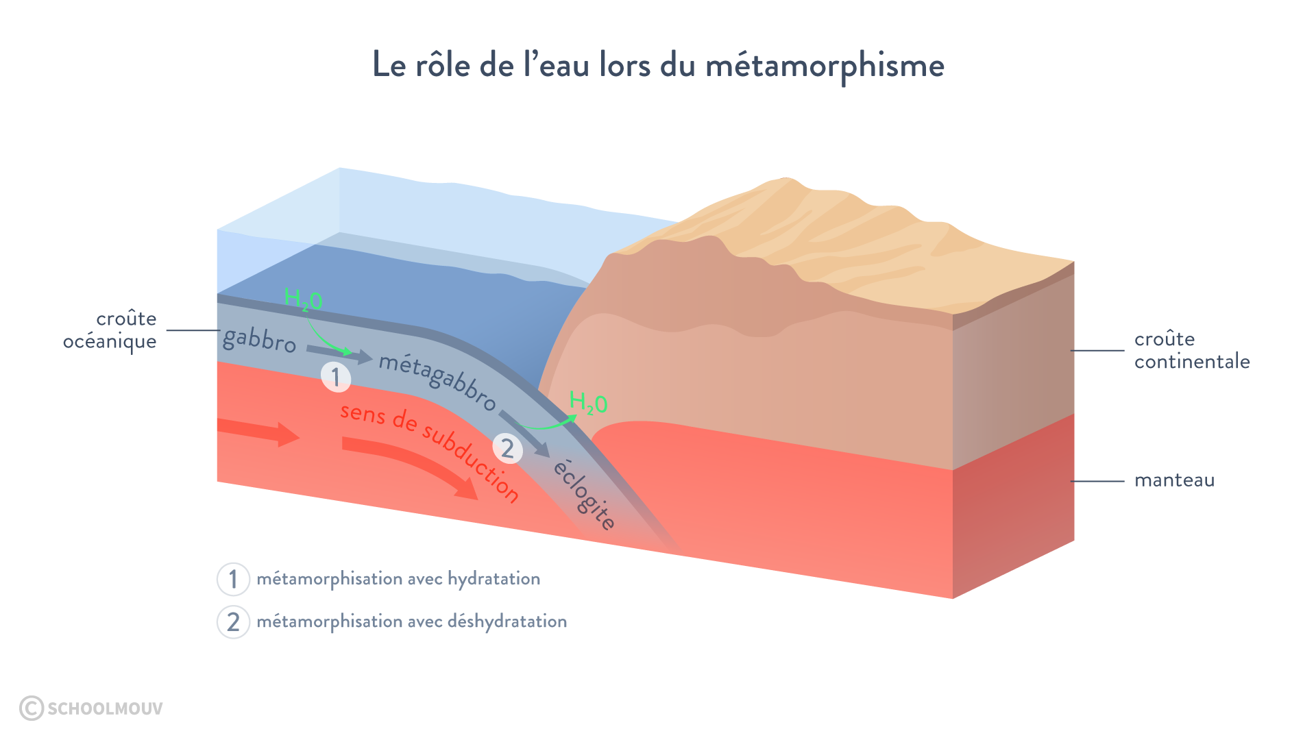 Schéma montrant l'importance de l'eau lors du métamorphisme gabbro métagabbro éclogite subduction hydratation de la croûte