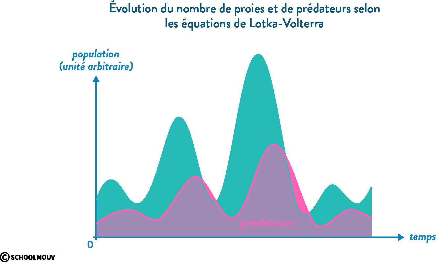 Lotka-Volterra modèle proie prédateur évolution populations
