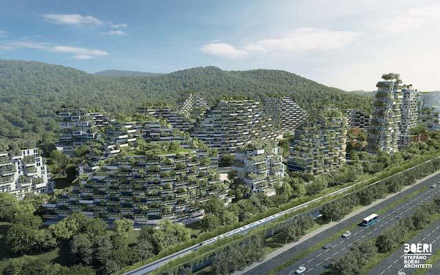 Chine ressources projet ville-forêt Liuzhou géographie première