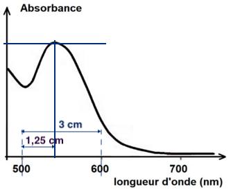 Terminale physique chimie première corrigé sujet zéro absorbance