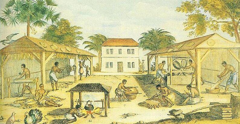 La culture du tabac par des esclaves en Virginie,1670 (auteur anonyme) - Histoire - 2de - SchoolMouv