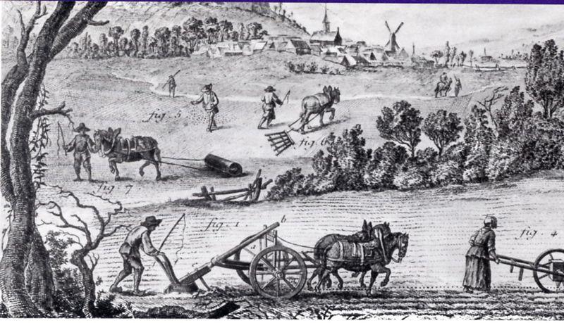 Travaux et outils agricoles au XVIIIe siècle, planche de l'Encyclopédie de Diderot et d'Alembert - Histoire - 2de - SchoolMouv