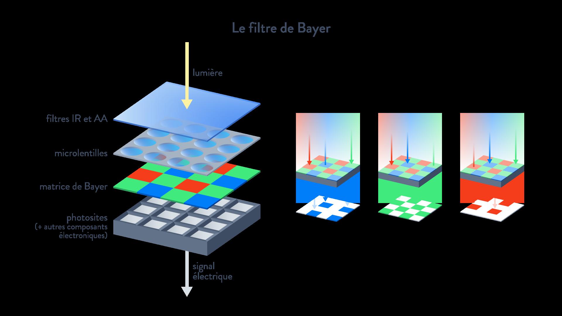 Le filtre de Bayer filtres IR et AA microlentilles matrice de Bayer photosites signal électrique Sciences numériques et technologie Seconde Comment est captée une image ?