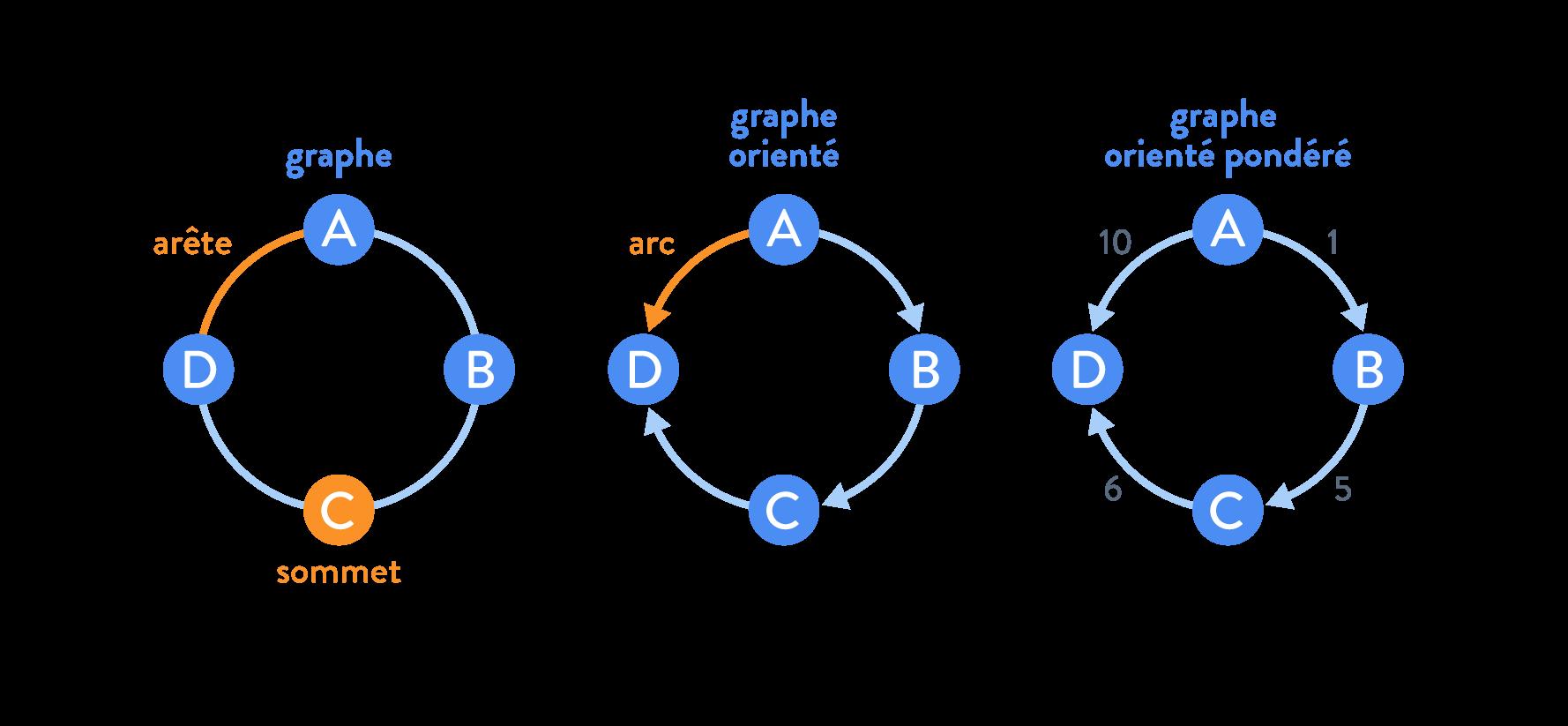 Un graphe, un graphe orienté et un graphe orienté pondéré arête arc sommet sciences numériques et technologie seconde