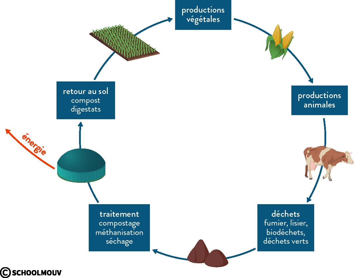économie circulaire agriculture durable