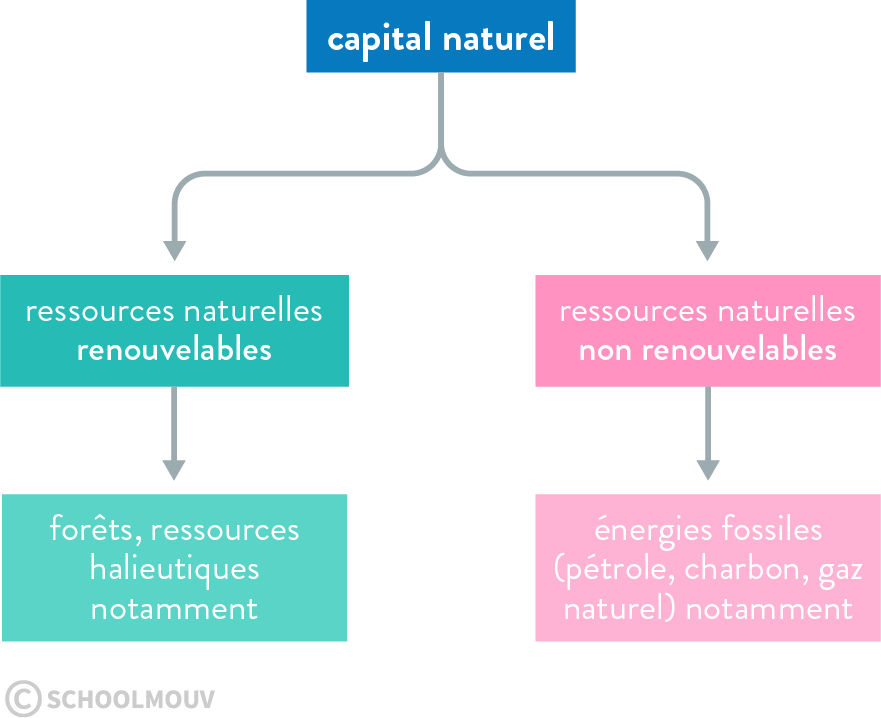 capital naturel