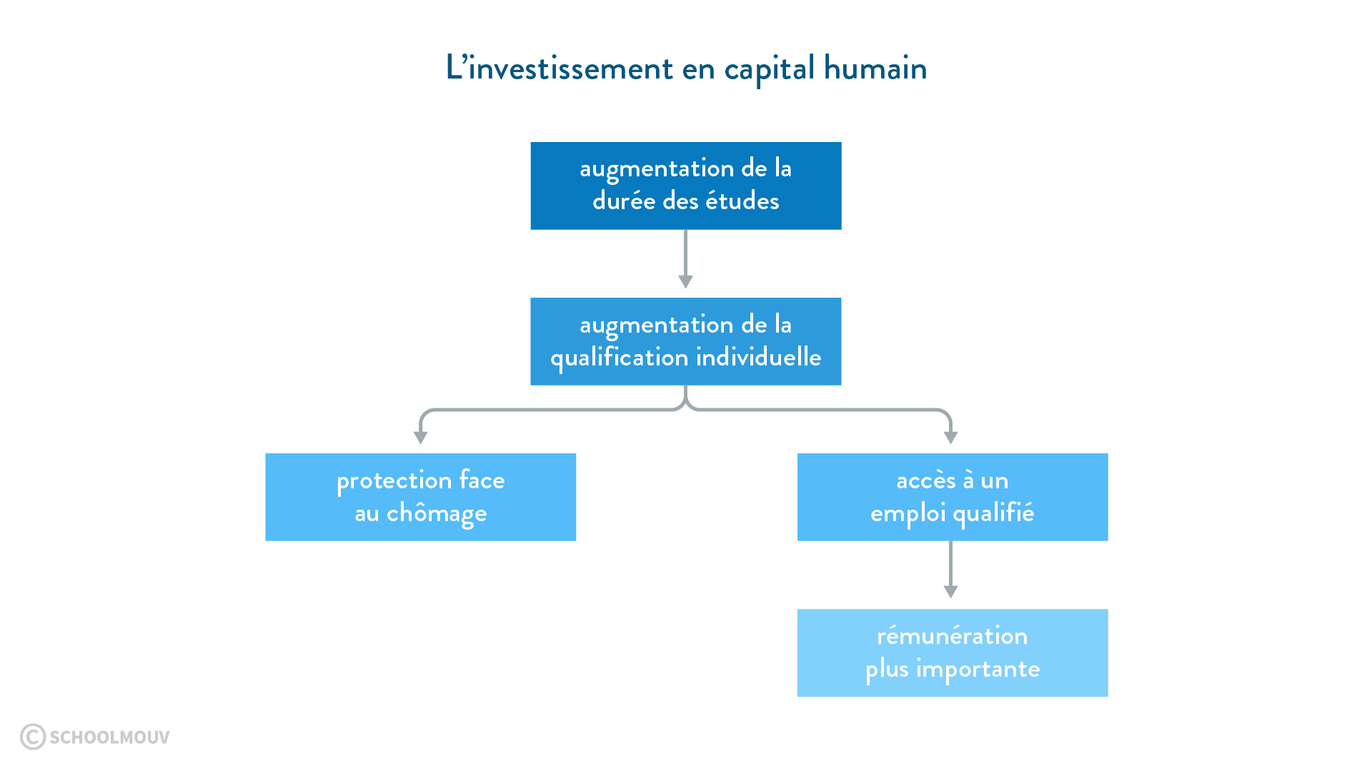 investissement en capital humain études