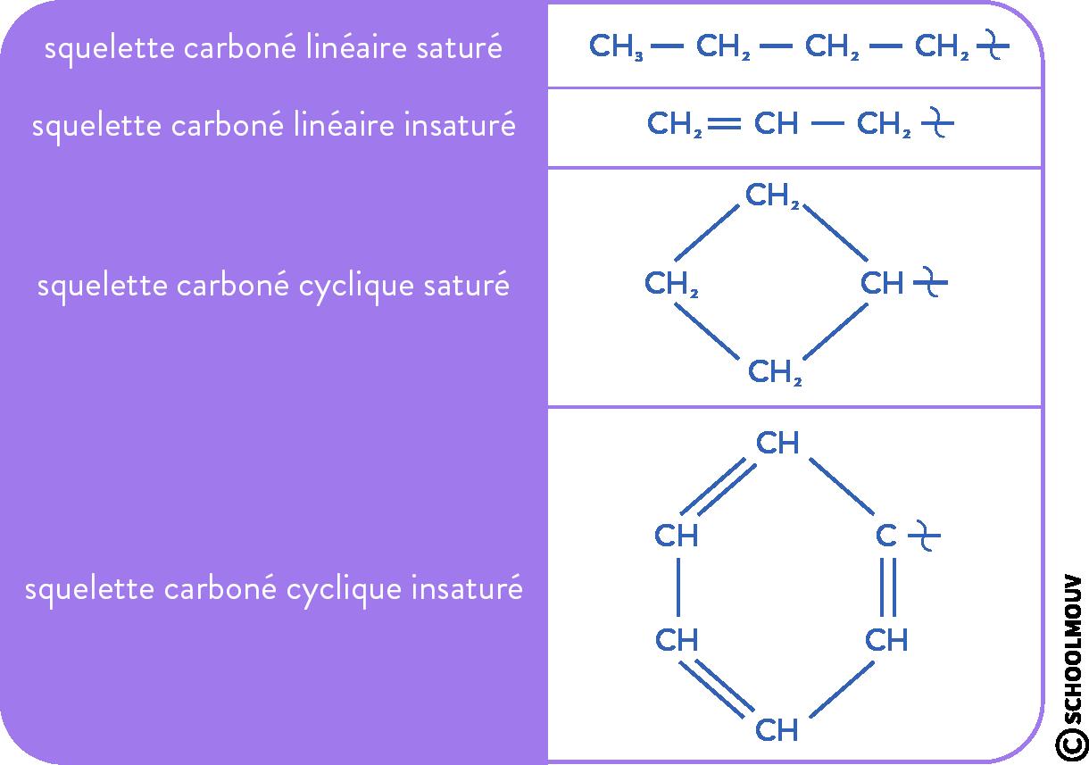 structure des molécules organiques physique chimie terminale squelette carboné
