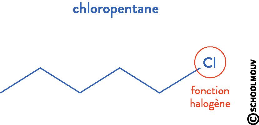structure des molécules organiques physique chimie terminale composé halogéné