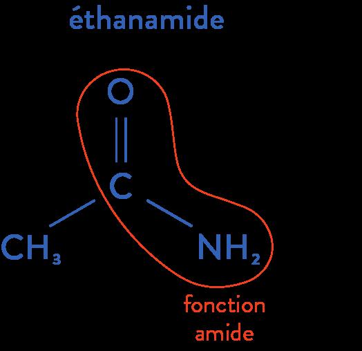 structure des molécules organiques physique chimie terminale amide