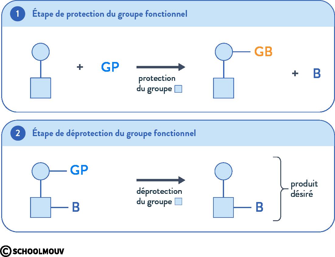 stratégie et sélectivité en chimie organique mécanisme de protection déprotection terminale physique chimie schoolmouv