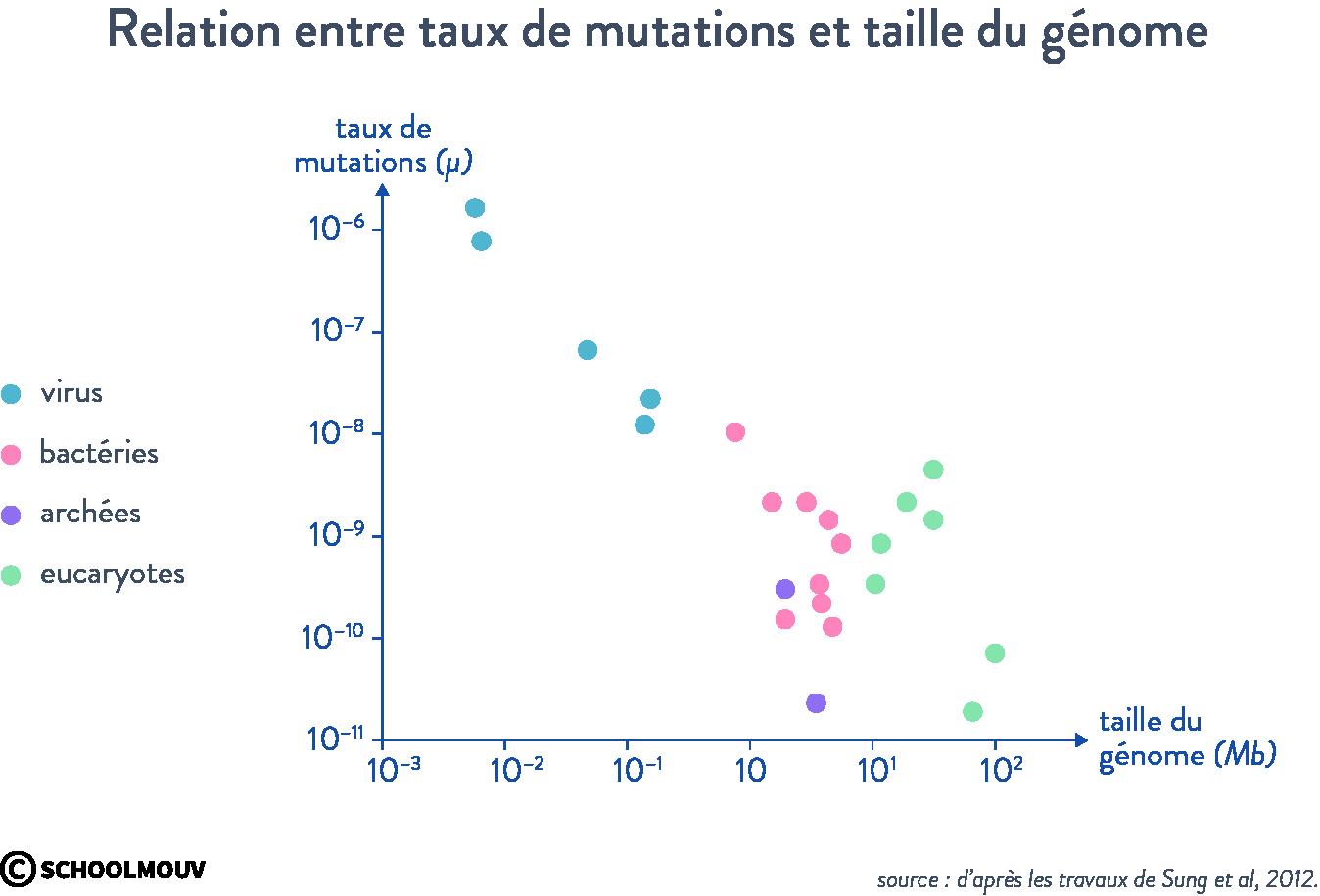 taux de mutation et taille du génome