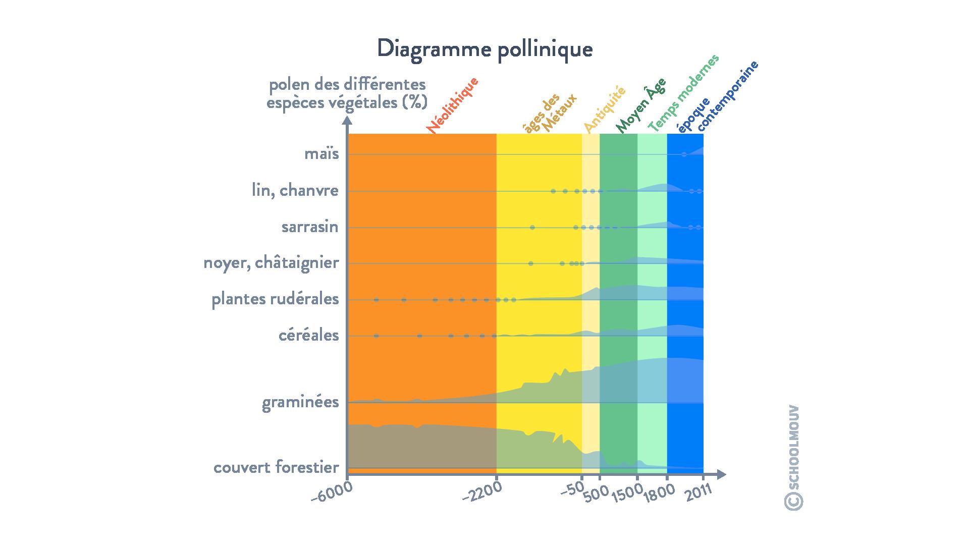 Diagramme pollinique