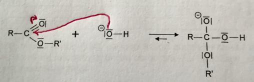 terminale s annale corrigé physique chimie 2019